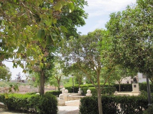 Garden in Chinchón