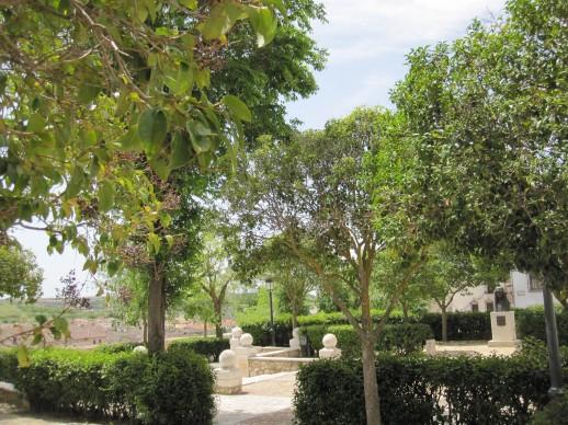 Garden in Chinchón